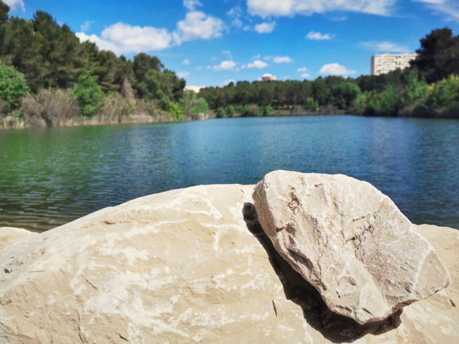 Balade 2 en 1 au départ du lac des garrigues à Montpellier